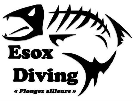Logo%20Esox.png